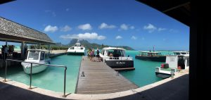 This is what the taxi line looks like in Bora Bora (they don't have Uber yet).